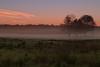 Sunrise, Yarmouth, Maine