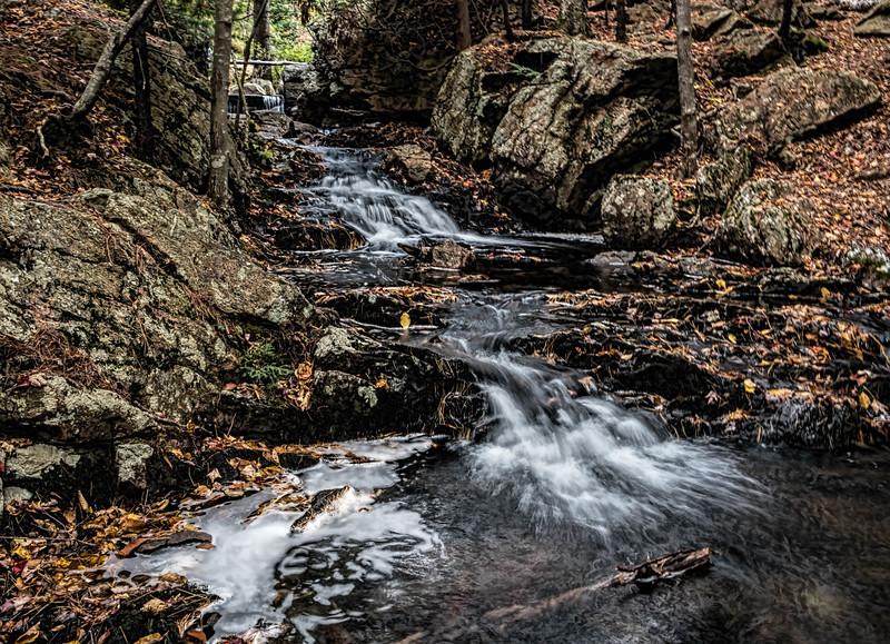 Near Bubble Pond, Acadia National Park