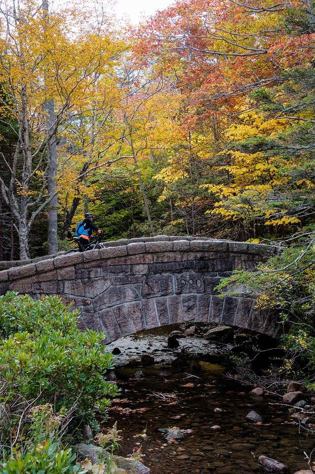 Near Jordan Pond, Acadia National Park