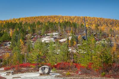 Blueberry Ledges, Baxter State Park, Maine