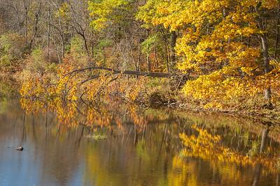 Kenduskeag River, Bangor, Maine