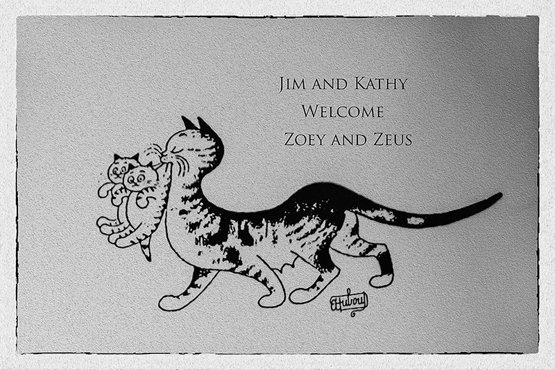 Our Announcement! Zeus and Zoey Have Arrived