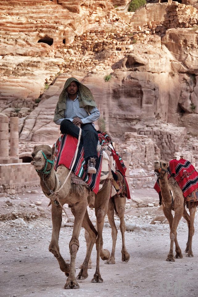 Want to ride a camel?<br /> Petra, Jordan