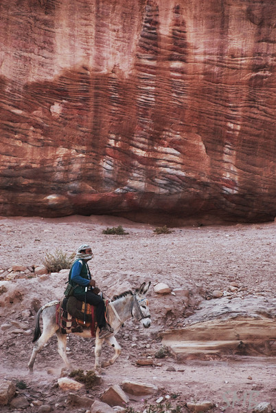 Bedouin and a donkey<br /> Petra, Jordan