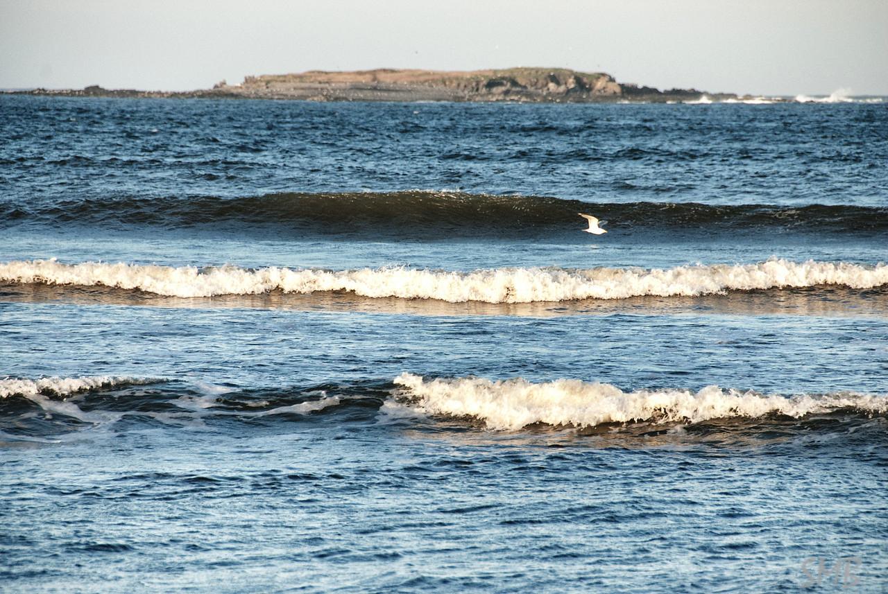 Eagle Island, Maine