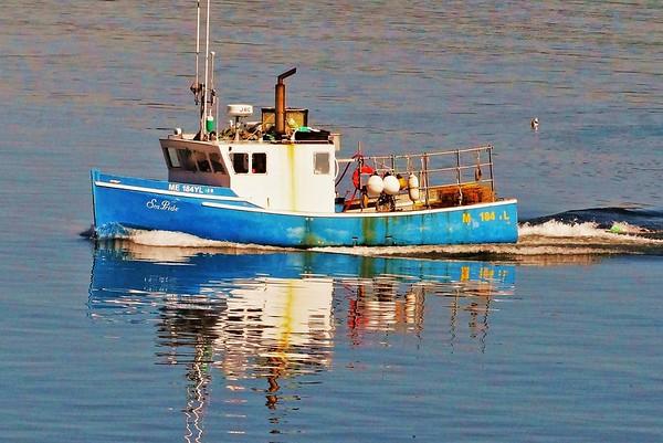 Maine Boats and Buoys