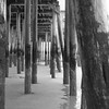 Under the Boardwalk - Old Orchard Beach - Maine