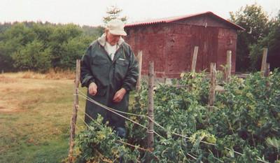 Grandpa's_Garden