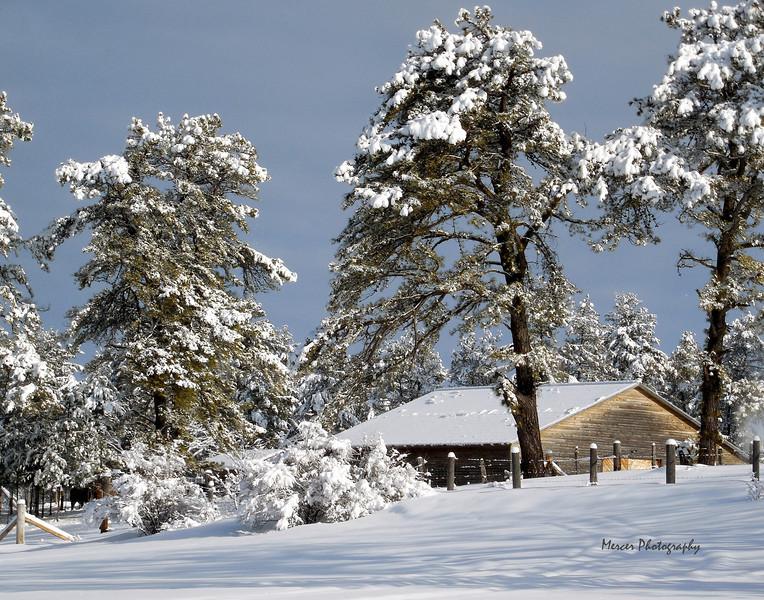SnowBarn13x11