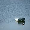 RowBoat20x16