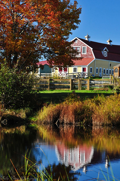 Love this yellow and red barn.