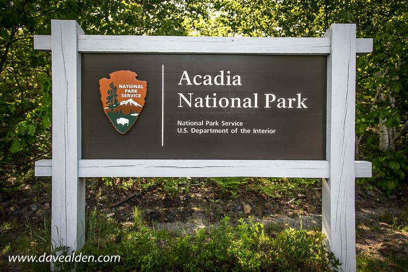 AcadiaNationalPark5-18.jpg