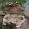 Large cherry burl second cut