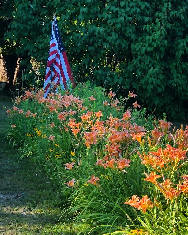. Gardens on the island