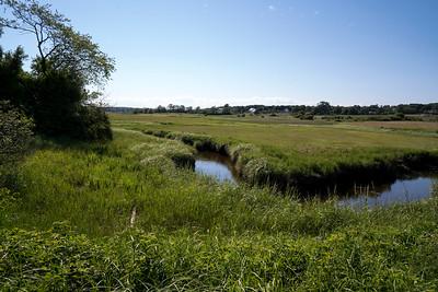 Marsh 07354