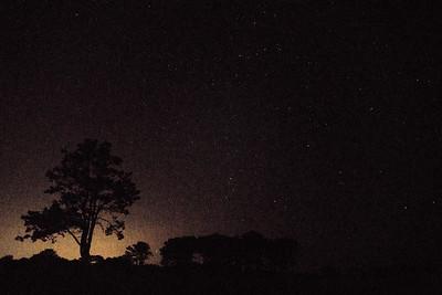 Stars 07321