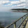 Fog caused a cancellation of our Puffin cruise but we did get to tour the Schoodic Peninsula, a part of Acadia National Park.
