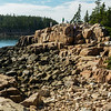 Red granite along Ships Harbor Trail in the Seawall section of Acadia National Park.