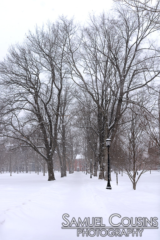 Winter in Brunswick