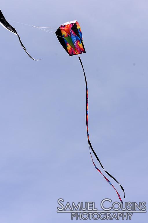 Bug Light Kite Festival