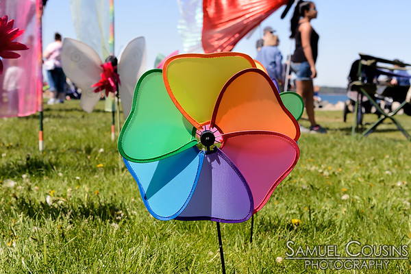 Bug Light Kite Festival 2017
