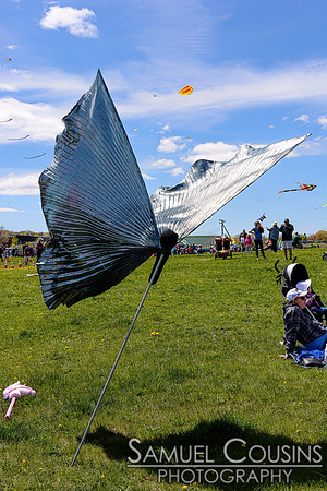 Bug Light Kite Festival