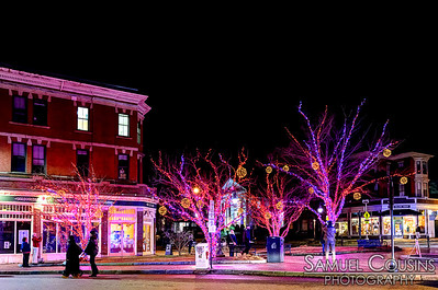Trees decorated with lights in Longfellow Square.