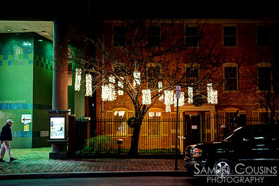 Lights having from a tree in front of the Longfellow House on Congress St.