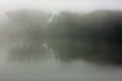 Fog C6102