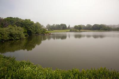Pond C6035