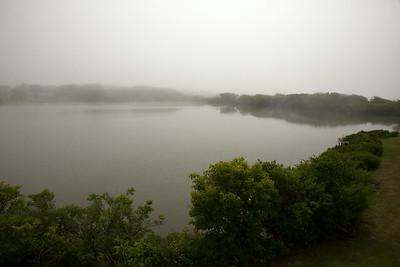 Pond fog C6070
