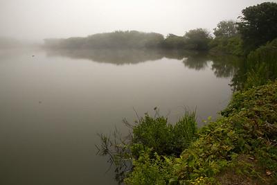 Pond fog C6092