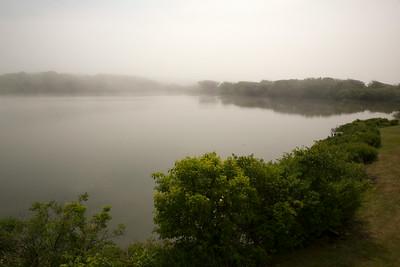 Pond fog C6003