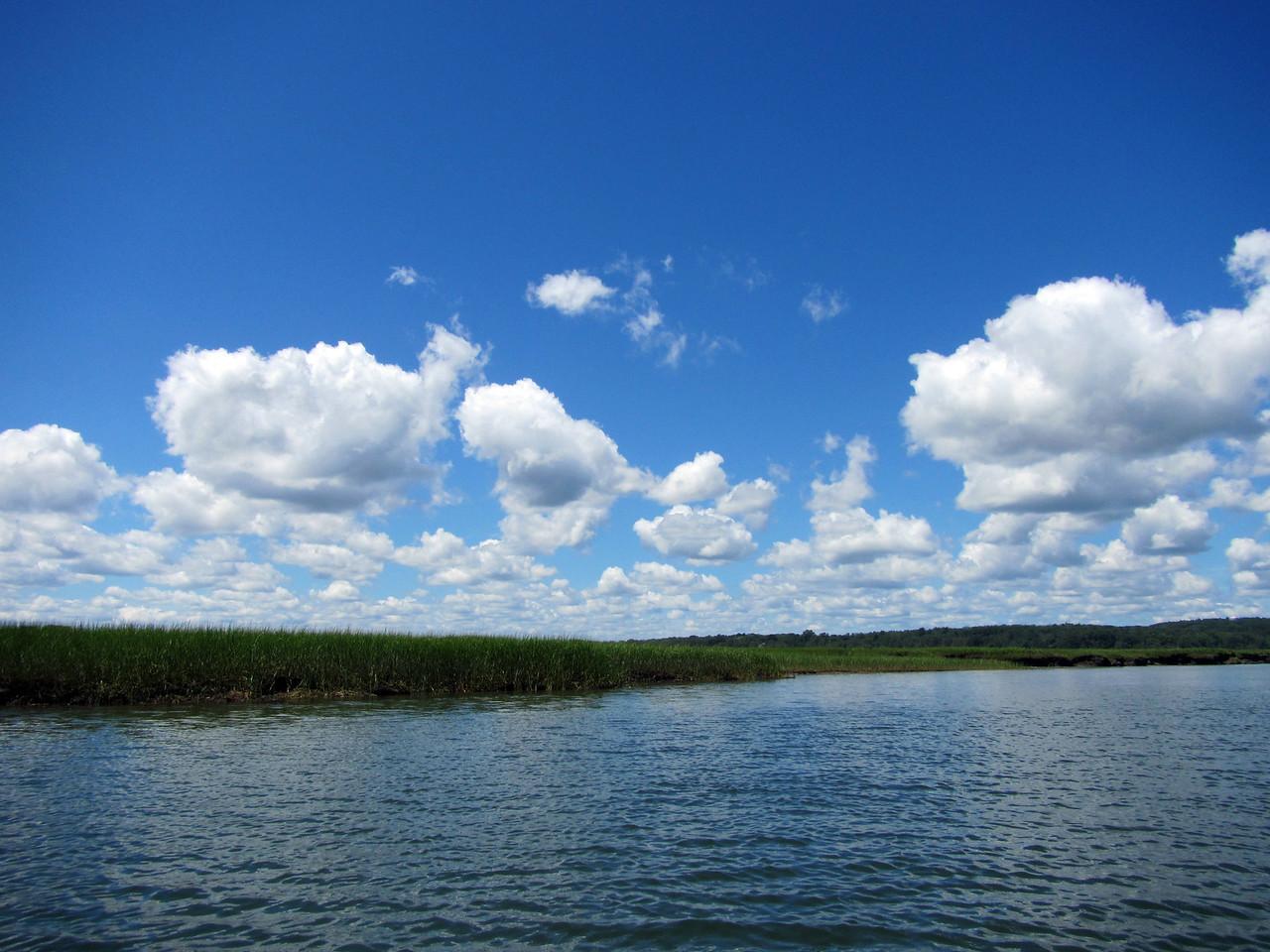 grass clouds 3351
