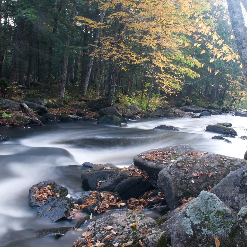 Ellis Falls - Maine