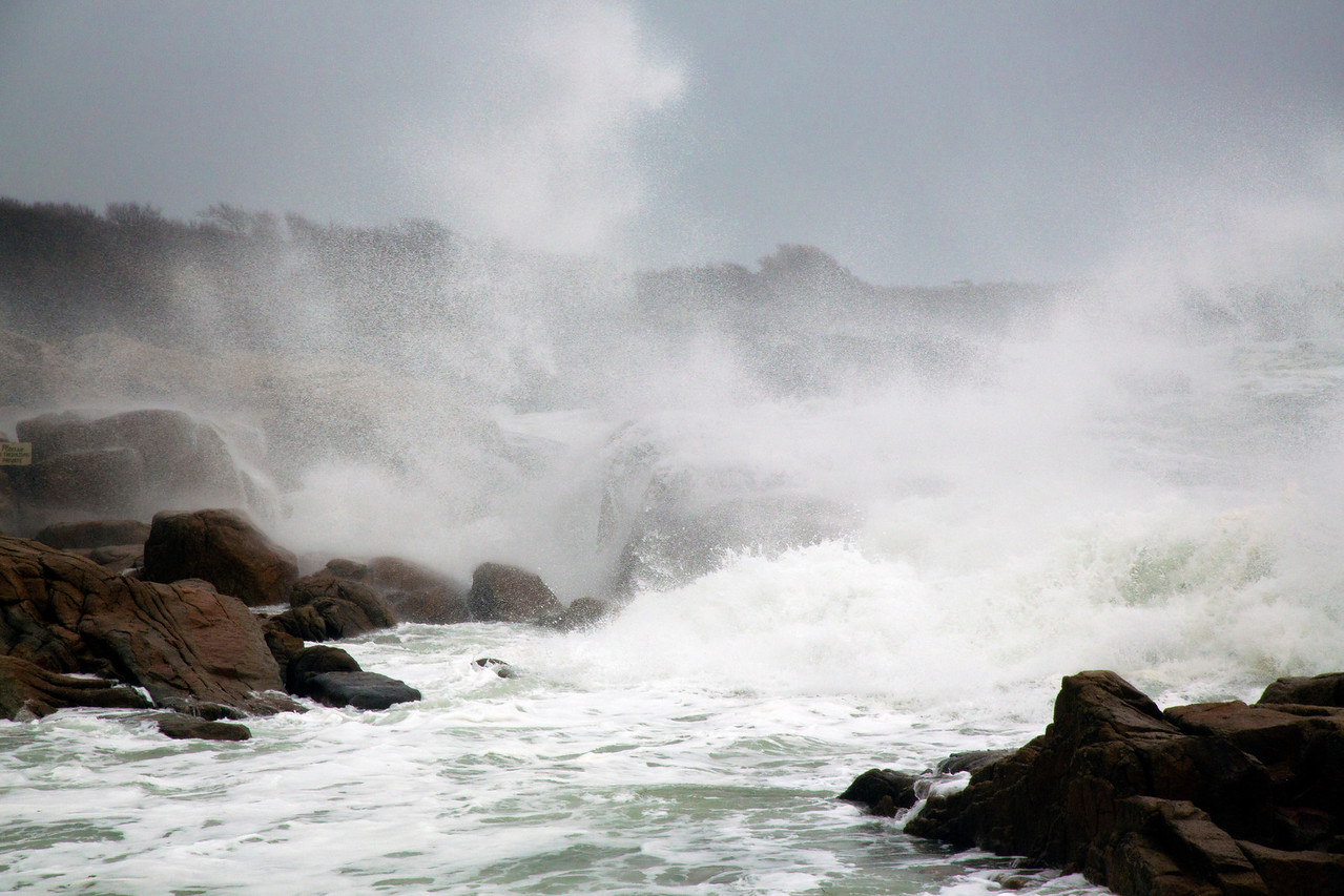 Ocean C4334