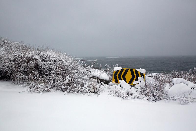 Ocean snow C4226