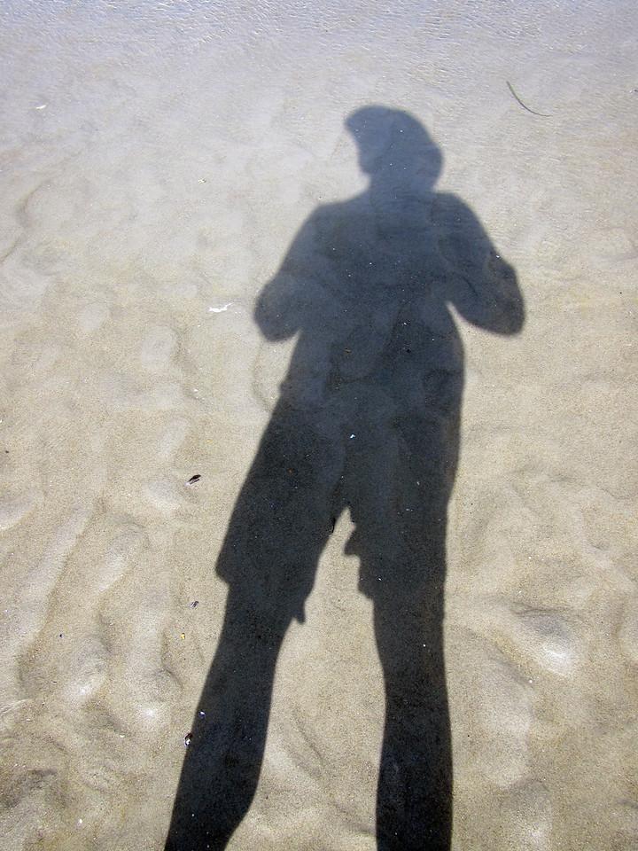 SelfP sand 2924