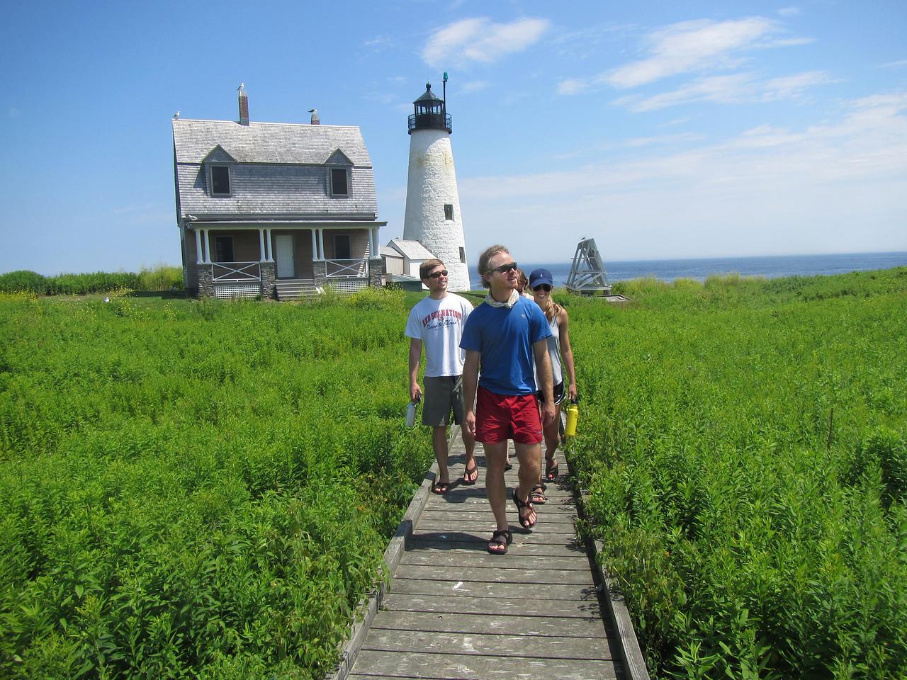 Lighthouse Tingles 3281