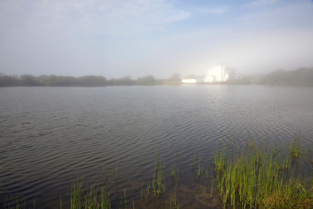 fog Pond C7306