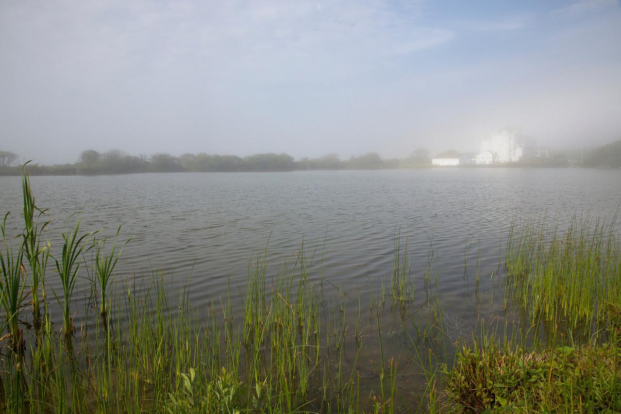 fog Pond C7311