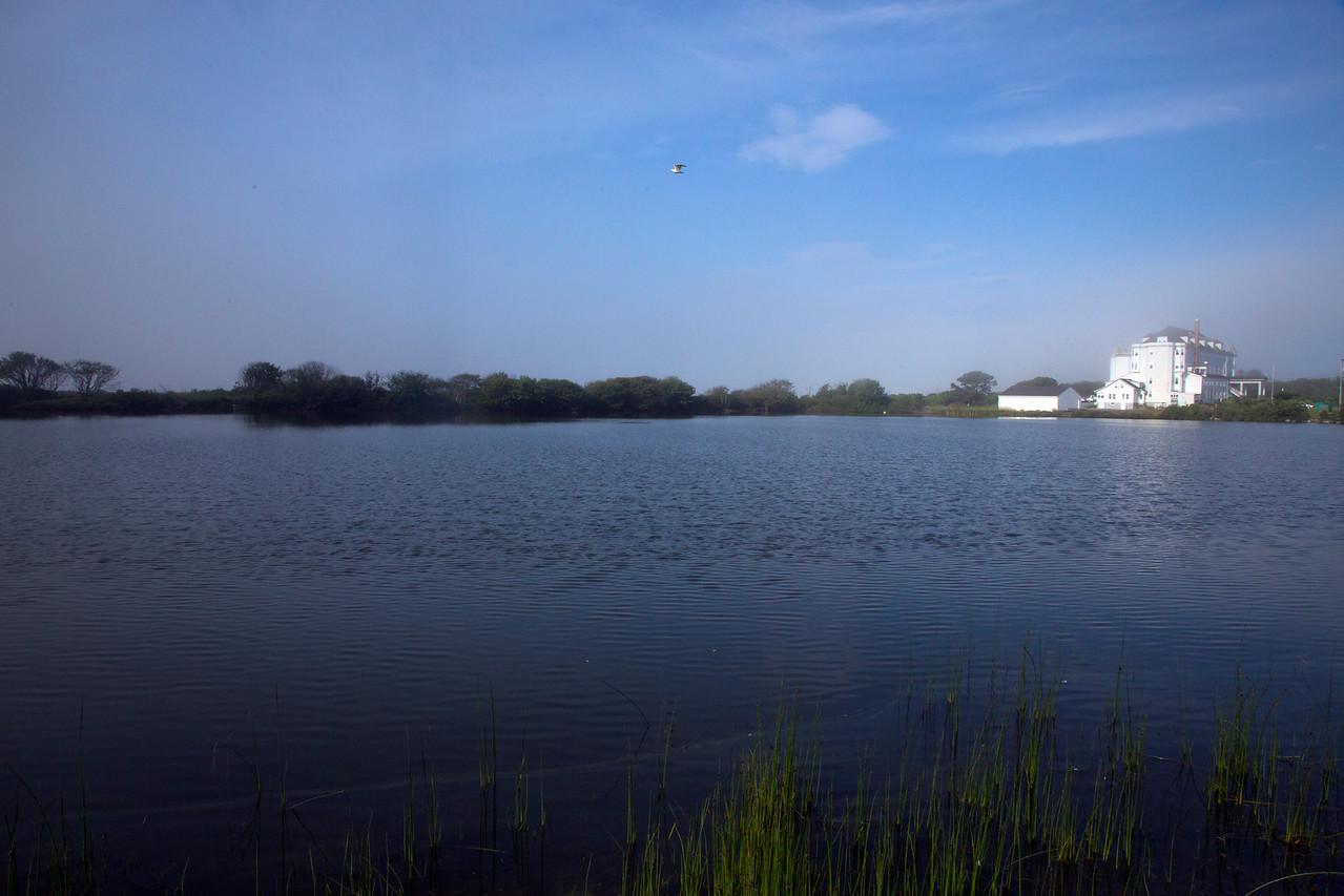 Pond C7208