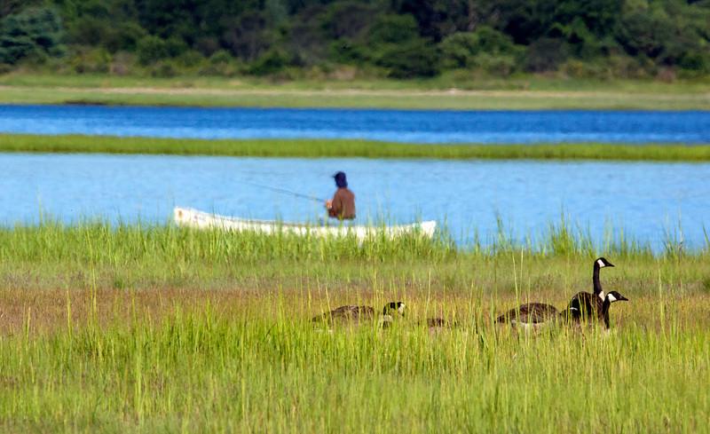 Geese canoe C7546