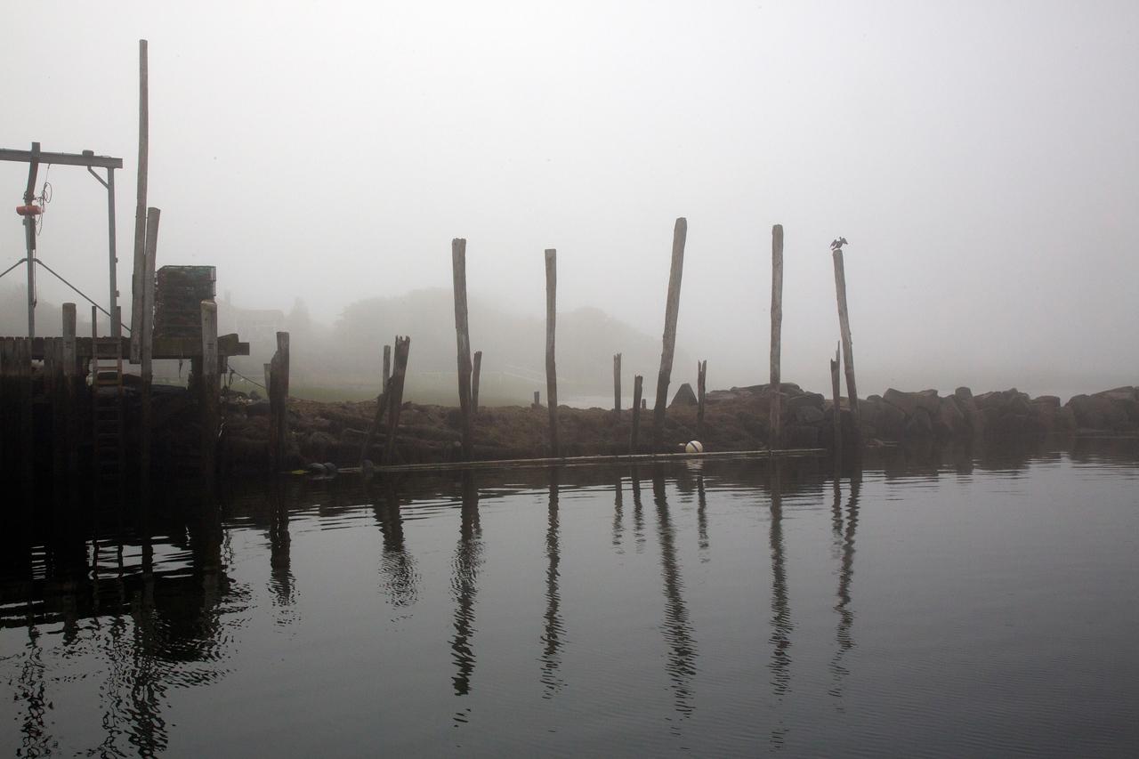 foggy dock C6605