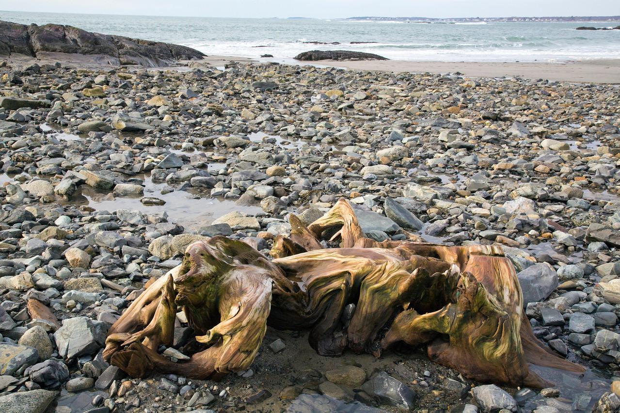 driftwood C2428