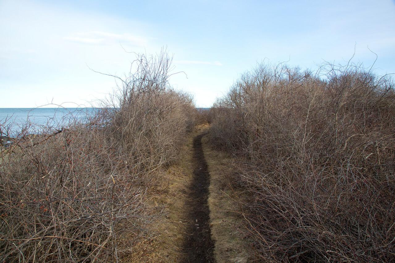 path C2520