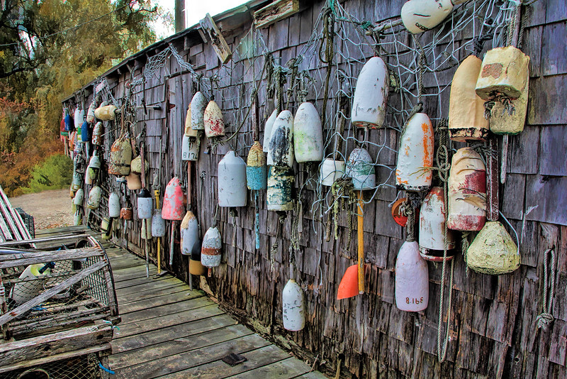 Cape Neddick Buoys