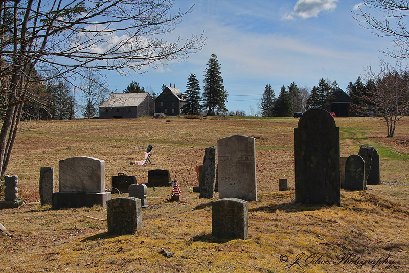 The Graveyard and Olson House with a visitor from up the road :-)