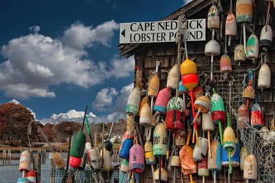 Cape Neddick Lobsters