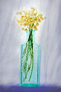 Lilies of the Valley in Old Bottle